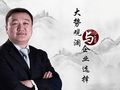 王丰:大势观澜与企业选择v2015