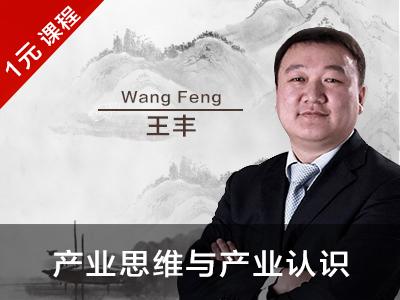 王丰:企业家应该确立的N个产业思维和产业认识(节选)