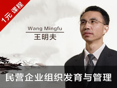 王明夫:一步步长大——民营企业的组织发育与管理(节选) }