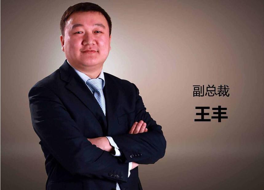 王䲹a��!n���[��X�_王丰:企业家应该确立的n个产业思维(下篇)