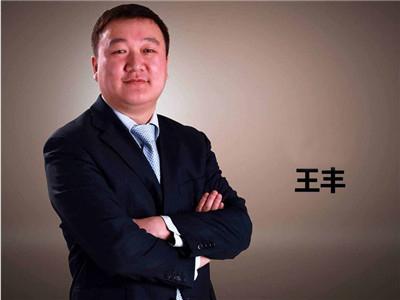 王丰:大势观澜与企业选择v2016 }