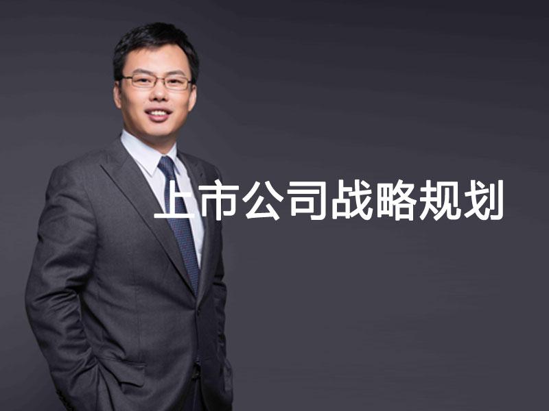 徐朝华:上市公司战略规划