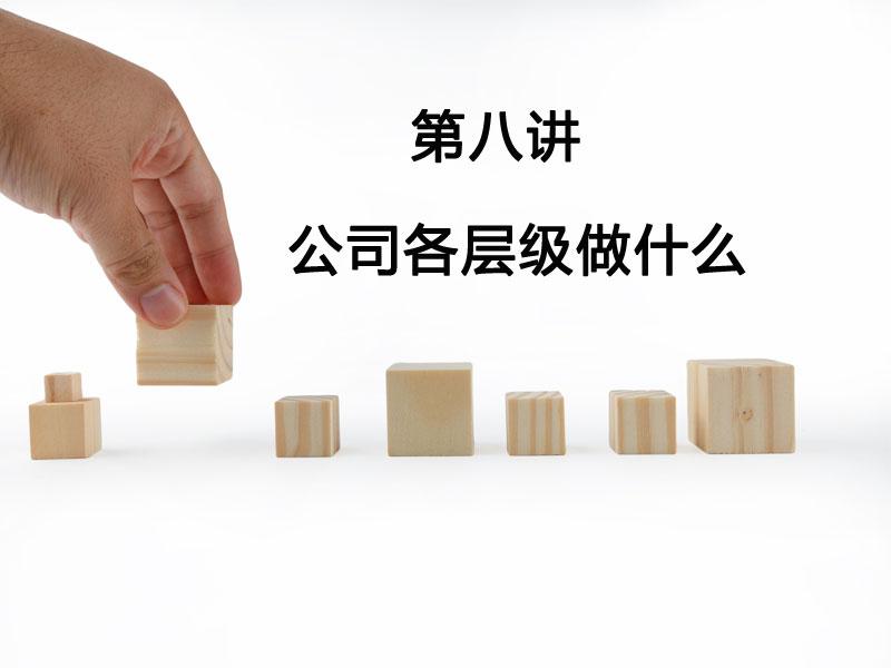 陈镭:公司各层级做什么