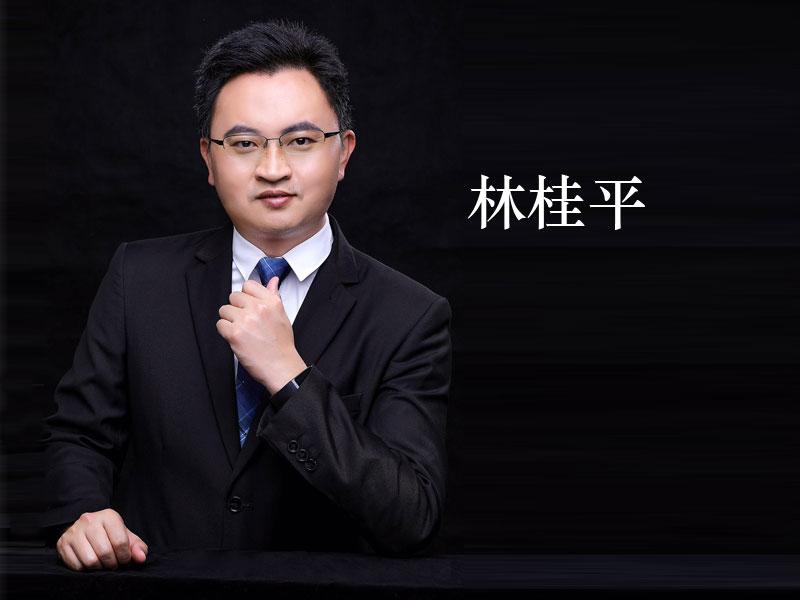 林桂平:商业模式创新和设计 }