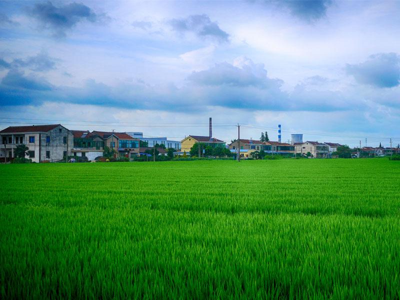 【6月15日19:00】王琦:乡村振兴战略——中国崛起与建设的下半场