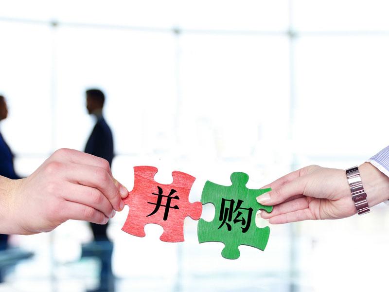 章嘉艺:并购重组与产业整合