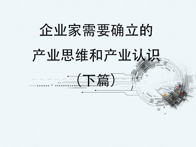 王丰:企业家需要确立的产业思维和产业认识(下篇) }